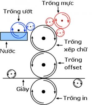 Sự khác biệt giữa in offset so với in kỹ thuật số trong dịch vụ in ấn.